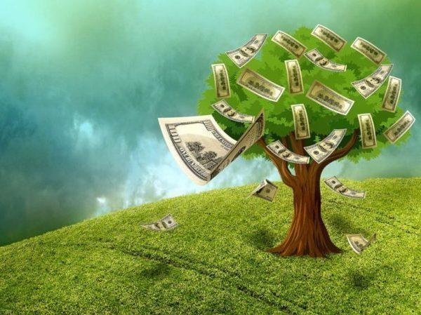 資産のなる木